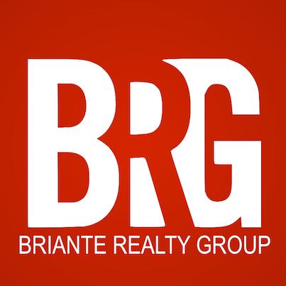 BRG Social Logo Portfolio