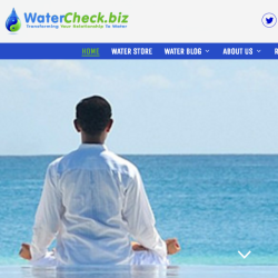 watercheck-biz