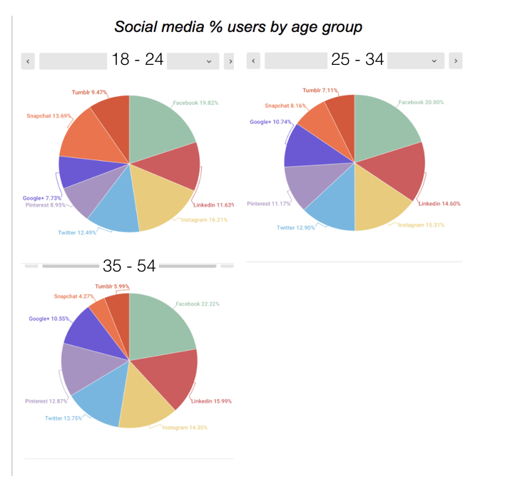 Social Media Users by Age Group
